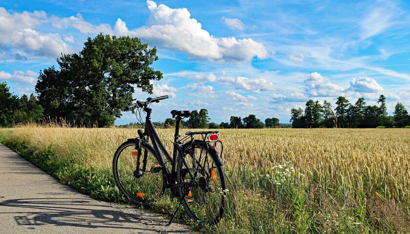NCM E Bike 2021
